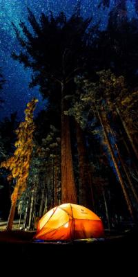 Photo en basse luminosité grâce à un capteur d'appareil photo assez grand